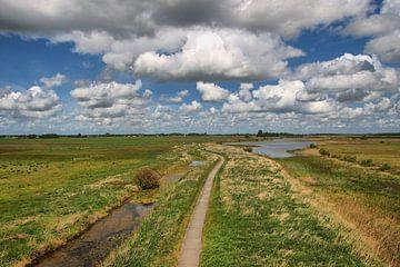 Uitkijk over het Groninger Landschap von Tineke Visscher