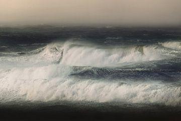Nordsee von Kenneth Stamp