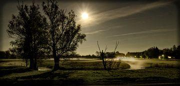 Reestdal met de Reest bij maanlicht van Eric van den Berg