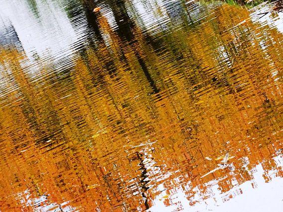 Urban Reflections 147