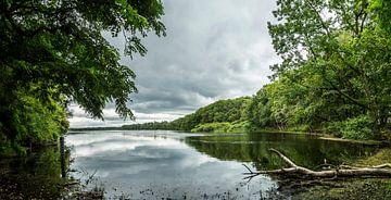 meer in de het bos van Fred Leeflang