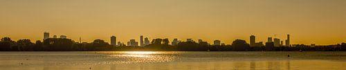 Panorama Rotterdam Skyline van