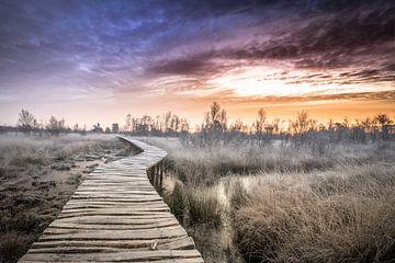Avant le lever du soleil sur Jeroen Mikkers