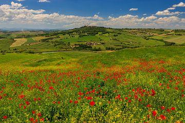 Voorjaar in Toscane, Italië van Henk Meijer Photography