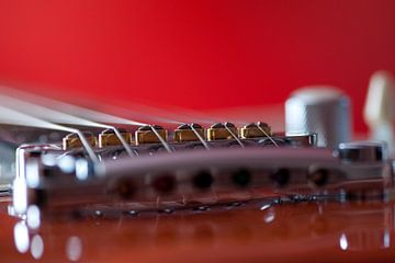 Guitar van Ed Wens