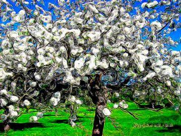 Apfelblüte van Helmut Englisch