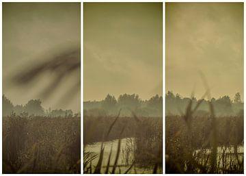 lauwersmeer triptychon 7 von anne droogsma