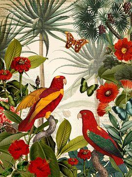 L'île des perroquets rouges sur christine b-b müller