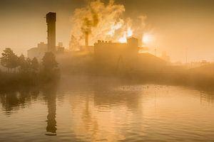 Suikerfabriek in de ochtendmist