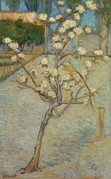 Blühender Birnbaum - Vincent van Gogh
