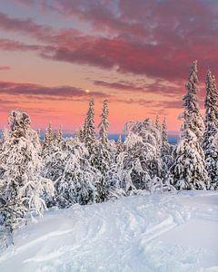 Ski resort Åre in het noorden van Zweden van