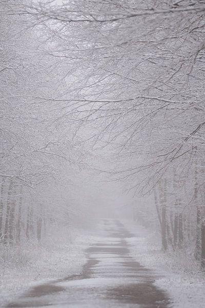 Straße im Winter von Rik Verslype