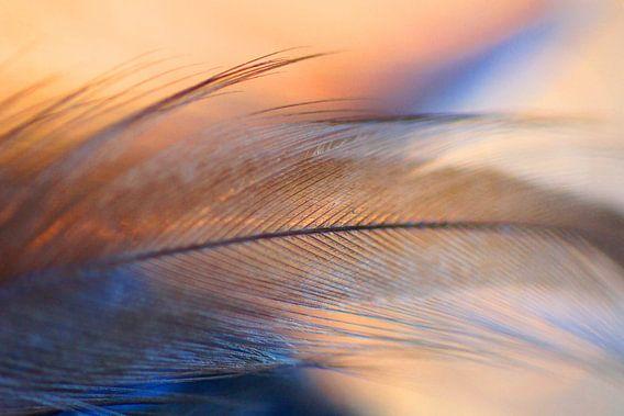 Fly away van Carla Mesken-Dijkhoff