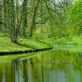 Groene oase van Marcel Pietersen