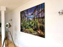 Kundenfoto: Verfallener Wintergarten (Gartenhaus) von Wim van de Water