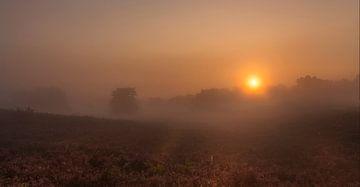 Mistige zonsopkomst op de Brunssummerheide von John Kreukniet