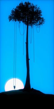 Swing Boy von Maarten Knops