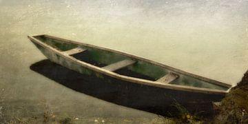 Floodplain - groene boot van Christine Nöhmeier