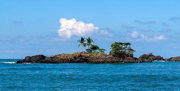 Costa Rica: Corcovado National Park van Maarten Verhees