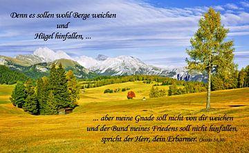 Denn es sollen wohl Berge weichen ... van Gisela Scheffbuch