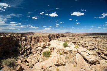 Grand Canyon overzicht van Hans Jansen