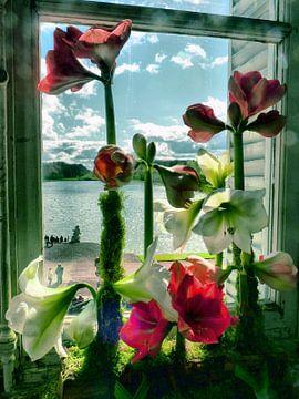 Bloemen van MG Capture