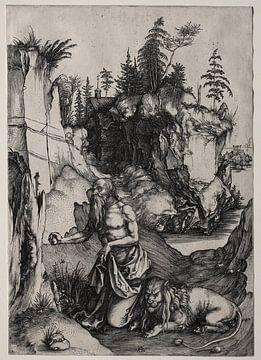 Der heilige Hieronymus in der Buße, Albrecht Dürer von De Canon