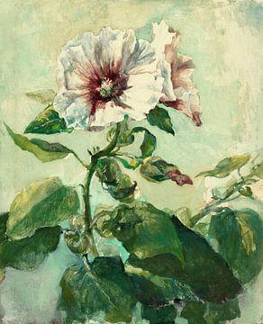Étude des roseaux roses à la lumière du soleil, de la nature, John La Farge sur