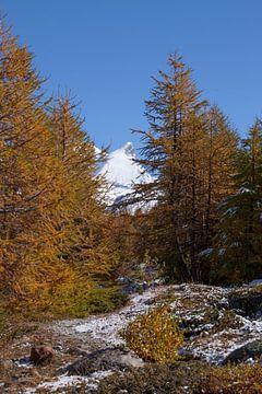 Zermatt : das Adlerhorn im Findelntal