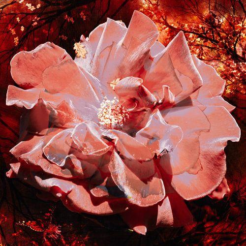 Roos in een warm herfstbos.