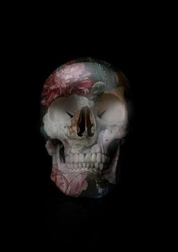 Skull 2.0 van De nieuwe meester