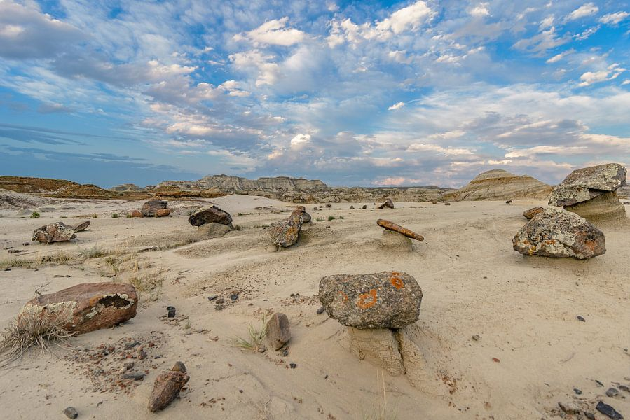 Dinosaurus stenen van Peter Vruggink
