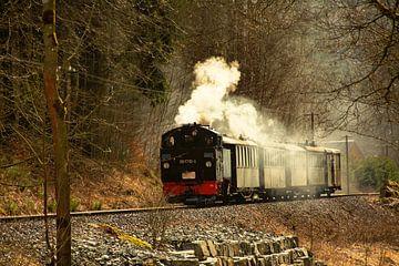 Fichtelbergbahn Erzgebirge von Johnny Flash