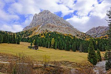 Peitlerkofel - een berg in Zuid-Tirol van Gisela Scheffbuch