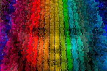 Gezicht in kleur van Ans Bastiaanssen