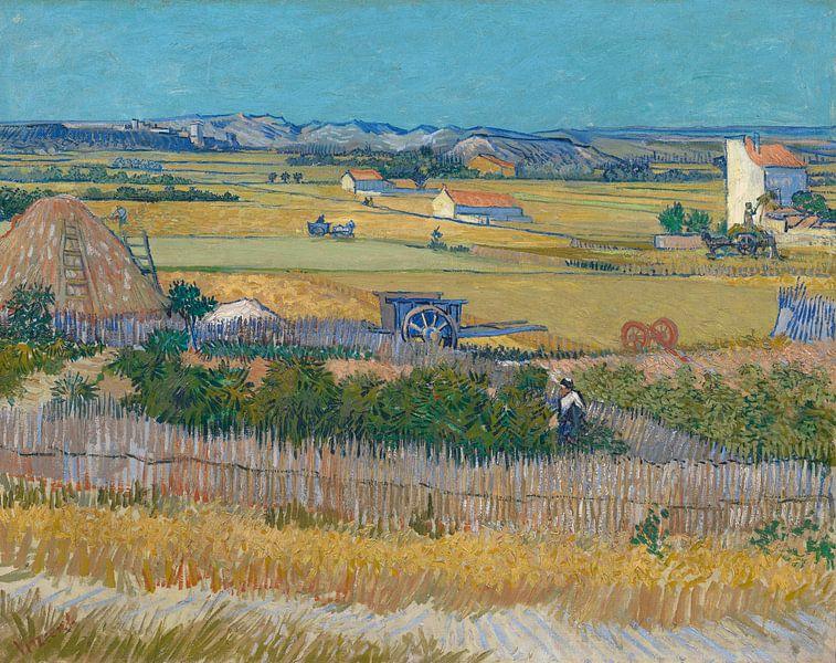 Die Ernte - Vincent van Gogh von 1000 Schilderijen
