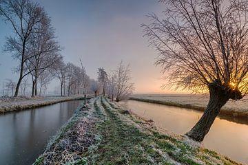 Frozen van Jan Koppelaar