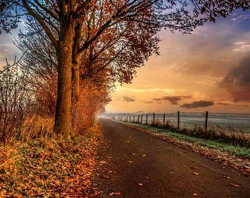 fietspad in de ochtend zon. von Robin Pics (verliefd op Utrecht)