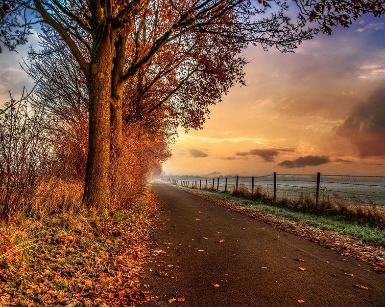 fietspad in de ochtend zon. van Robin Pics