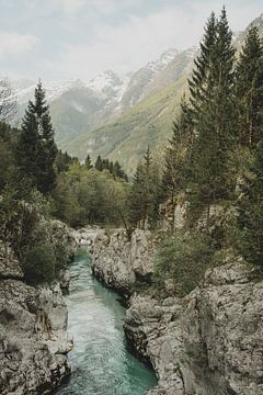 Soča Fluss von Paulien van der Werf