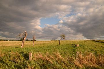 Een gat in de wolken... von Maarten Honinx