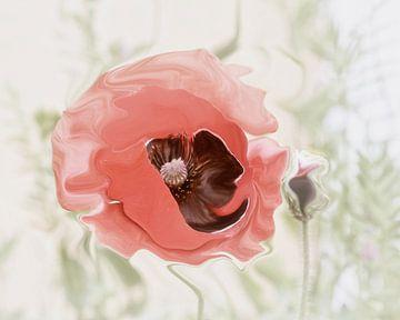 Pastel Poppy von Yvonne Blokland