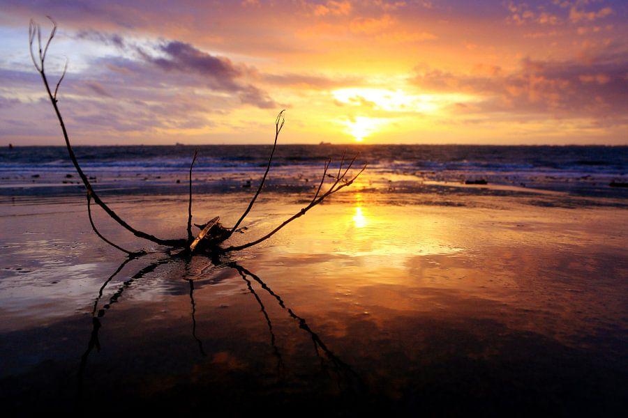 beautiful sunset...  van Els Fonteine
