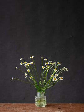 Madeliefjes in vaas van Jenneke Boeijink