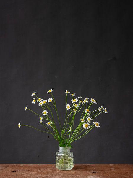 Foto print van madeliefjes in glazen vaasje tegen donkere achtergrond. van Jenneke Boeijink