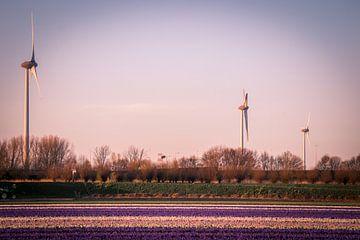 windmolens bij zonsondergang van Peter Heins