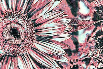 Rote Sonnenblume von Niek Traas