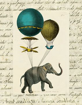 Elephant Ride I V2, Sue Schlabach van Wild Apple