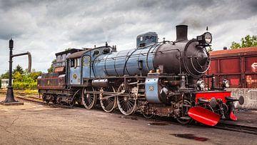 Dampflokomotive 1220 ZLSM von Rob Boon