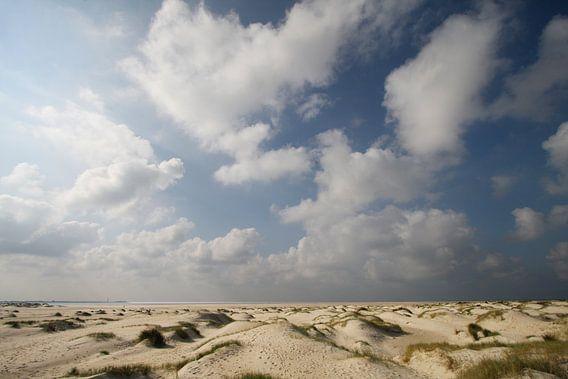 Hors Texel van Martijn Smit